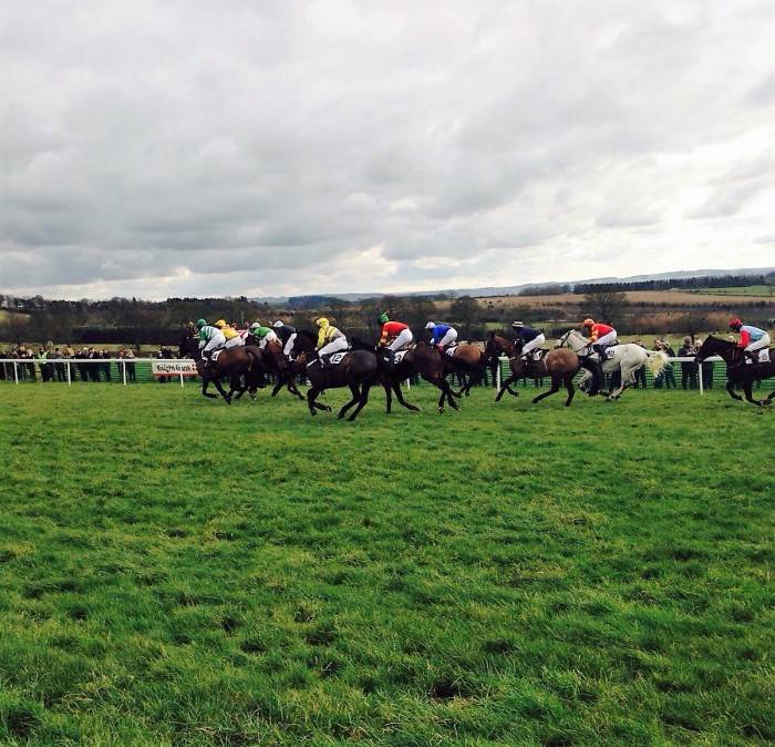 Physiotherapists support point-to-point at Corbridge