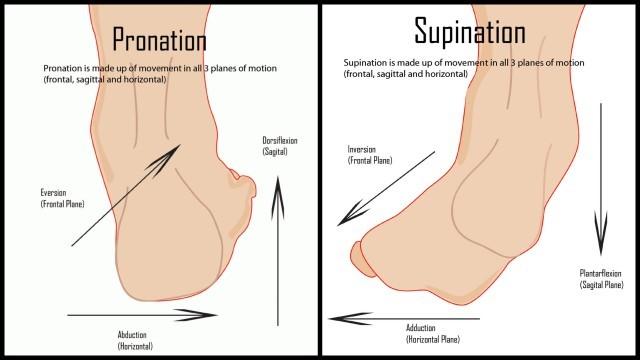 pronation-supination