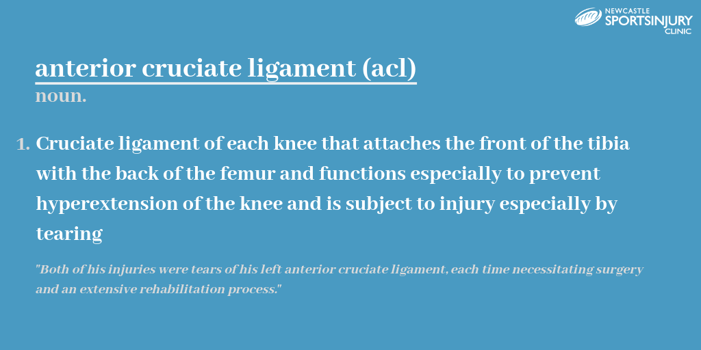 WHAT IS THE ANTERIOR CRUCIATE LIGAMENT?